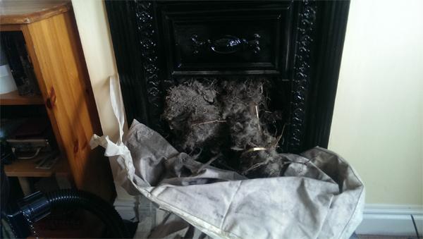 chimneysweep2